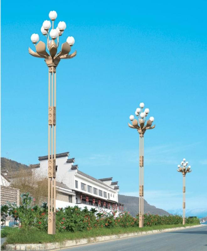 武汉玉兰灯5